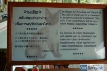 House for Breeding and Nature of Thai Cats (4カ国語での支援要請)