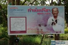 House for Breeding and Nature of Thai Cats (この方が運営しています)